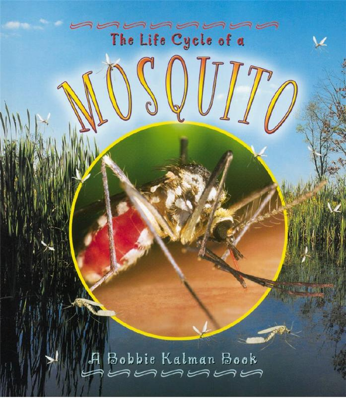 The Life Cycle of a Mosquito - PB