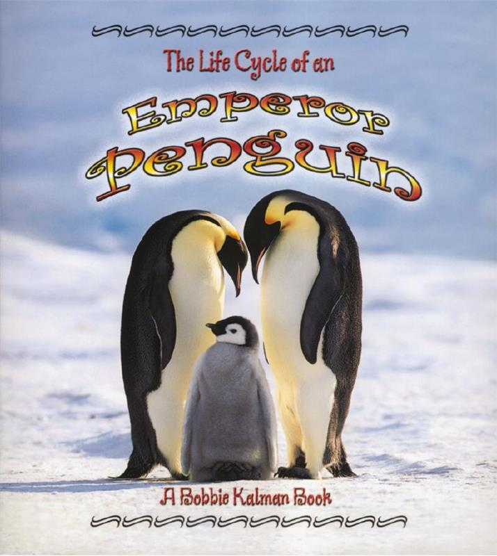 The Life Cycle of an Emperor Penguin - PB