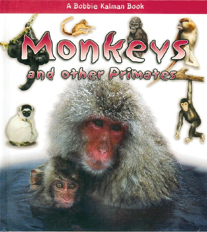 Monkeys and other Primates - HC