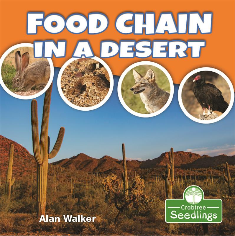 Food Chain in a Desert - HC