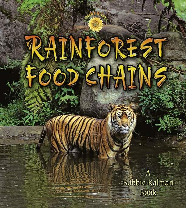 Rainforest Food Chains-ebook