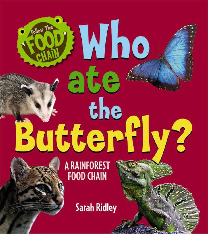 Who Ate the Butterfly? A Rainforest Food Chain - PB