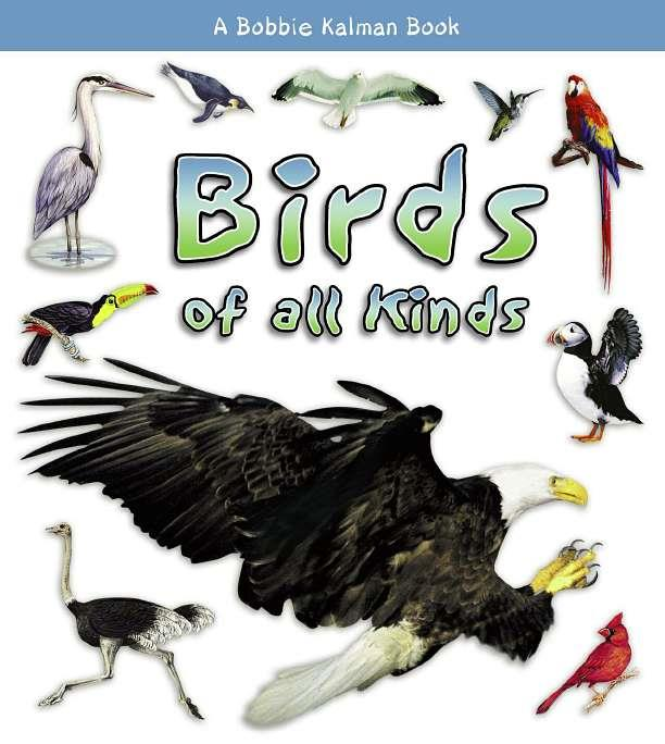 Birds of all Kinds-ebook