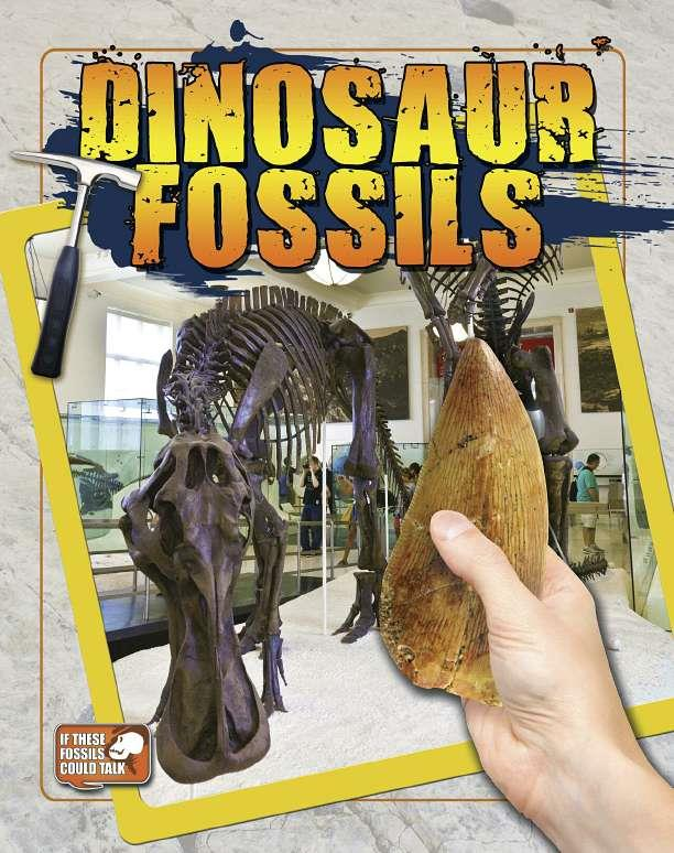 Dinosaur Fossils - eBook