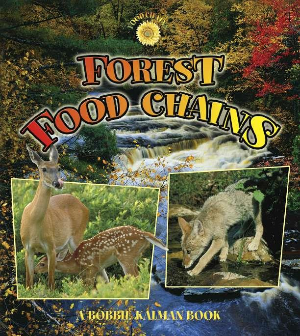 Forest food chains ebook fandeluxe Ebook collections