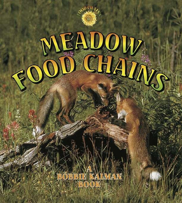 Meadow food chains ebook fandeluxe Ebook collections