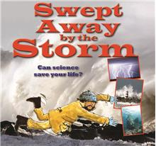 Swept Away by the Storm - PB