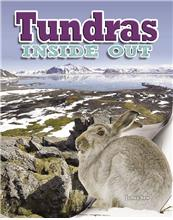 Tundras Inside Out - HC