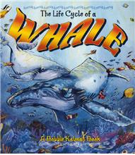 The Life Cycle of a Whale - PB