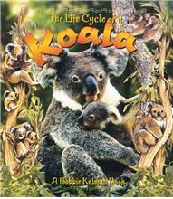 The Life Cycle of a Koala - PB