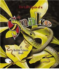 The Life Cycle of a Snake - PB