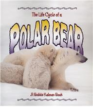 The Life Cycle of a Polar Bear - PB