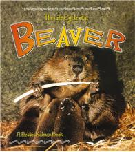 The Life Cycle of a Beaver - PB