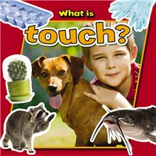 What is touch? - PB
