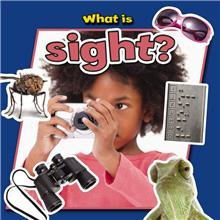 What is sight? - PB