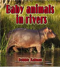 Baby animals in rivers - HC