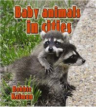 Baby animals in cities - PB