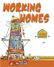 Working Homes - eBook