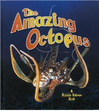 The Amazing Octopus - HC