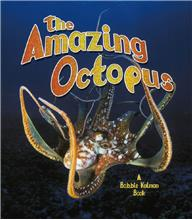 The Amazing Octopus - PB
