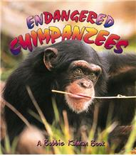 Endangered Chimpanzees - PB