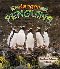 Endangered Penguins - PB