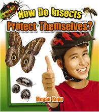 How Do Insects Protect Themselves? - HC