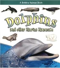 Dolphins and other Marine Mammals - PB