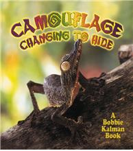 Camouflage: Changing to Hide - PB