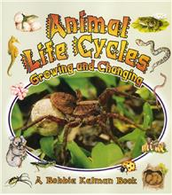 Animal Life Cycles: Growing and Changing - PB