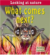 What comes next? - PB
