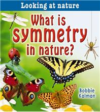 What is symmetry in nature? - PB