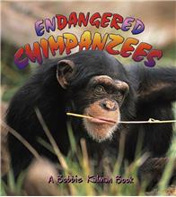 Endangered Chimpanzees - eBook