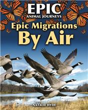 Epic Migrations by Air - PB