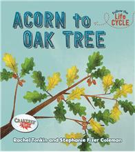 Acorn to Oak Tree - HC