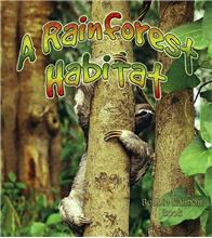 A Rainforest Habitat - eBook