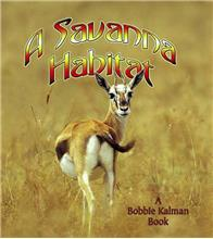 A Savanna Habitat - eBook