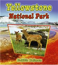 Yellowstone National Park - eBook