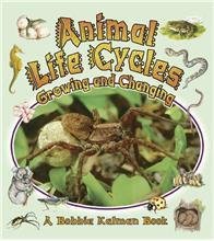 Animal Life Cycles: Growing and Changing-ebook