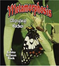 Metamorphosis: Changing Bodies-ebook