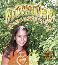 Photosynthesis: Changing Sunlight into Food-ebook