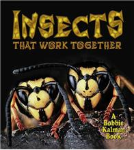 Insects that work together - eBook