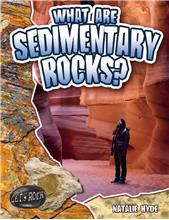 What Are Sedimentary Rocks? - HC