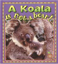 A Koala is Not a Bear! - PB