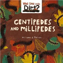 Centipedes and Millipedes - PB