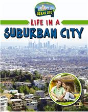 Life in a Suburban City - PB