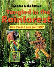 Tangled in the Rainforest - eBook