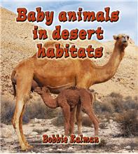 Baby animals in desert habitats - HC