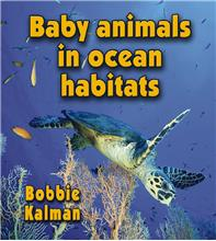 Baby animals in ocean habitats - HC