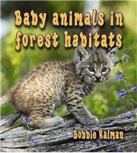 Baby animals in forest habitats - PB